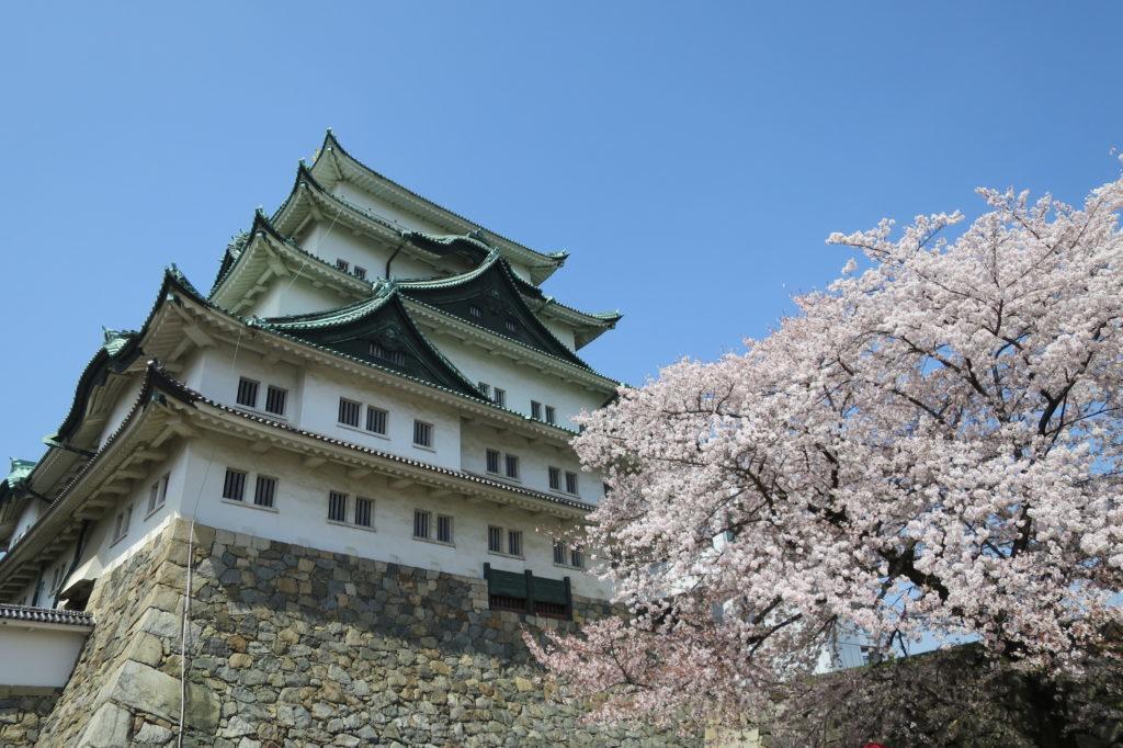 名古屋城春まつり~護国神社とテレビ塔も巡る