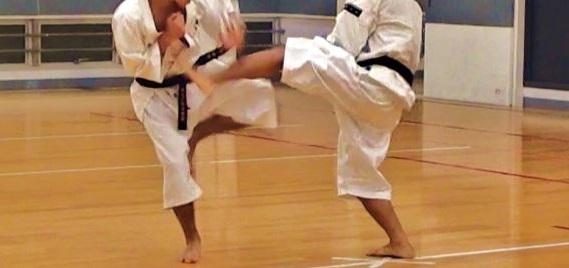 45歳から始めた少林寺拳法・自分改造計画~10ヶ月を振り返る