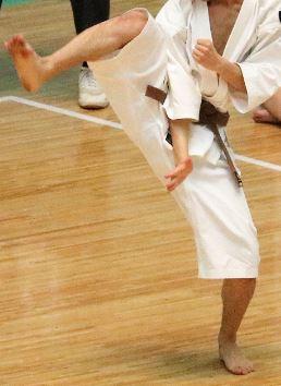 男45歳、少林寺拳法を始める~入門前体験